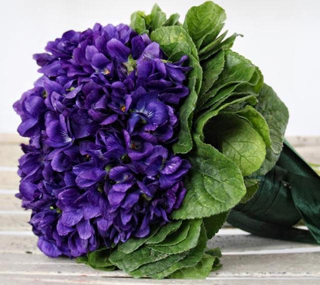 Immagini Fiori Violette.Violette Fiori Nel Piatto Da Dessert Foodpress